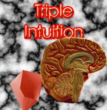 Triple Intuition - PDF Download